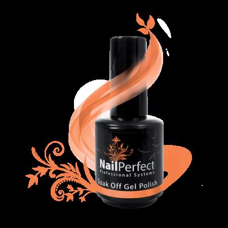Nail Perfect Soak Off Gel Polish Bright Future 115 (77118)